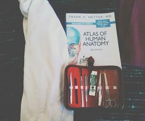 anatomy, atlas, and goals image
