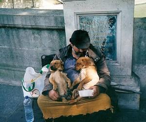 dog, homeless, and man image