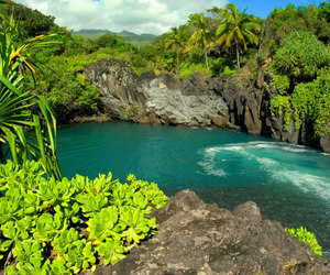 beauty, tropical, and paradise image