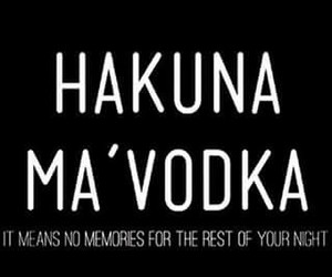 vodka, party, and hakuna matata image