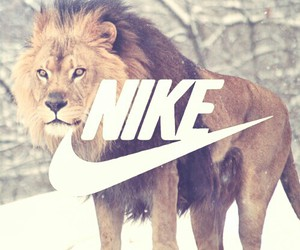 lion, nike, and hiver image