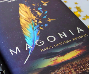 magonia, book, and feather image