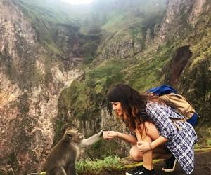 girl, monkey, and travel image