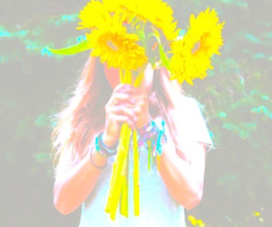 filter and sunflowers image