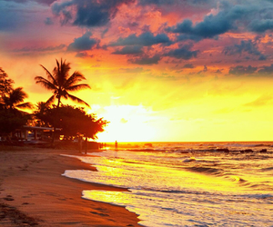 beach, sunset, and backgrounds image