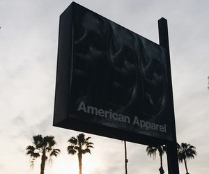 american apparel, girl, and palm trees image