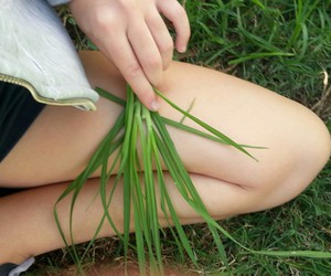 girl, legs, and green image