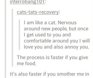 anxiety, cat, and friend image