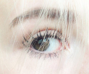 lashes, blonde, and eye image