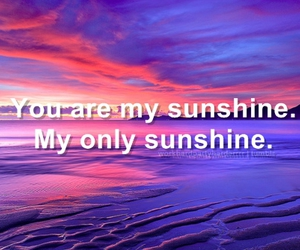 you are my sunshine and the civil wars image
