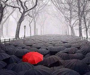 red, umbrella, and black image