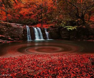 paysage, red, and cascade image