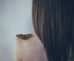 art, beauty, and butterfly image