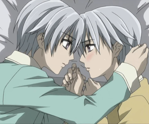 twins and vampire knight image