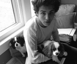 boy, puppy, and Hot image