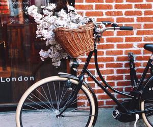 flowers, bike, and london image
