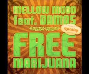 reggae and mellow mood image