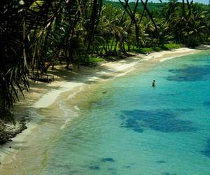 beach, ete, and plage image
