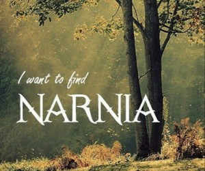 narnia, iwantto, and findit image