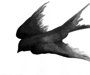bird, drawing, and black image