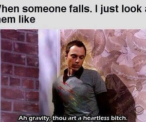 funny, gravity, and big bang theory image