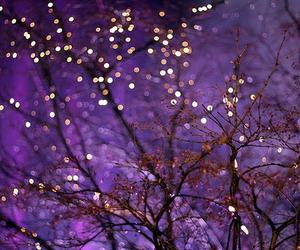 tree galaxy lights cute image