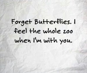 butterfly, quote, and love image