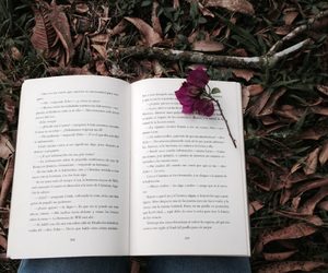 nature, read, and love image