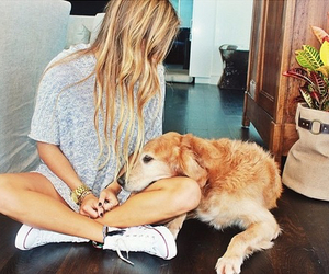 dog, hair, and style image