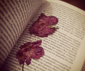 book, favourite, and the best love image