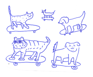 cat, dog, and drawing image