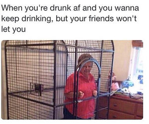 drunk, friends, and fun image