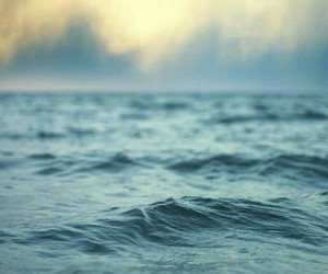 sea, ocean, and water image