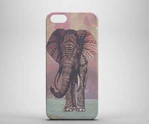 coral, elephant, and galaxy image