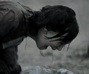 cry, pain, and the hunger games image