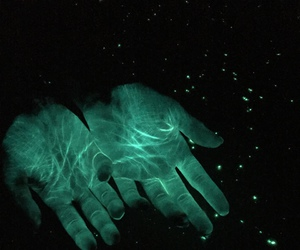 aesthetic, hands, and beautiful image