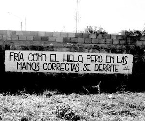 amor, acciónpoetica, and frases image