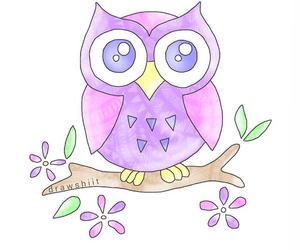 animal, overlay, and owl image
