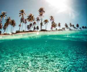 beach, dreaming, and sea image