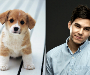 awn, boy, and puppy image