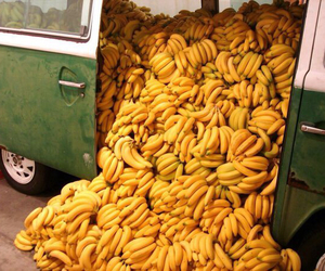 bananas and yellow fruit yummy bus image