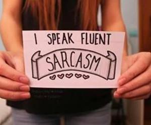 sarcasm, tumblr, and lol image