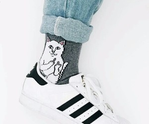 adidas, cat, and socks image