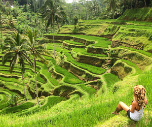amazing, bali, and blond image