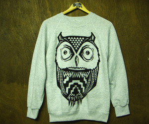 owl and sweater image