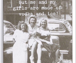 vodka, friends, and girls image