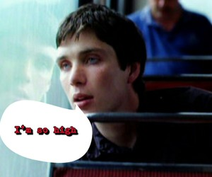 funny, disco pigs, and cillian murphy meme image