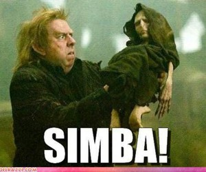 harry potter, simba, and voldemort image
