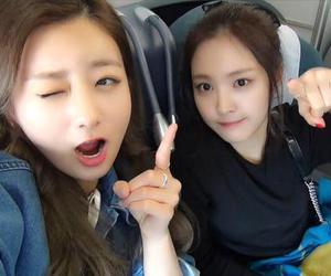 apink, pink panda, and naeun image