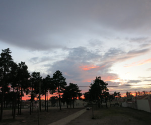sky, sunset, and tree image